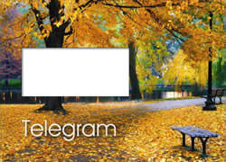 A colourful picture of the changing season, ideal for a condolence message.